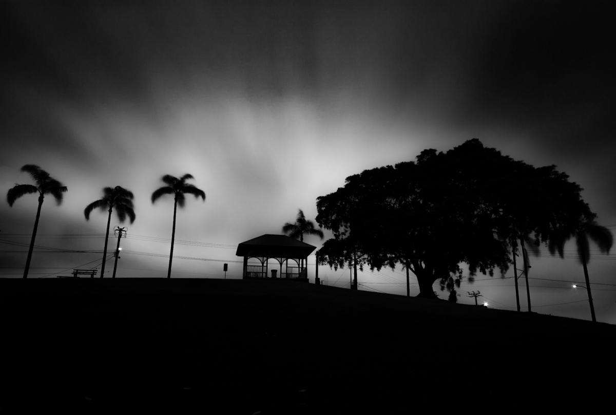 Park-Noir1