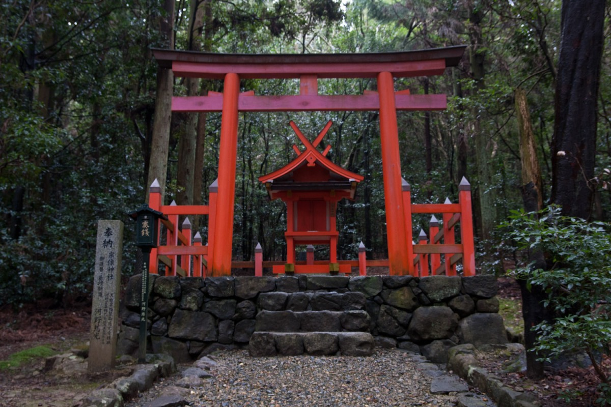 torii-en-el-santuario-kasuga